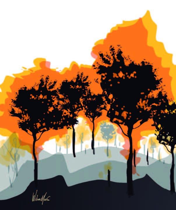 Cápsulas sobre el cambio climático II (El fuego)