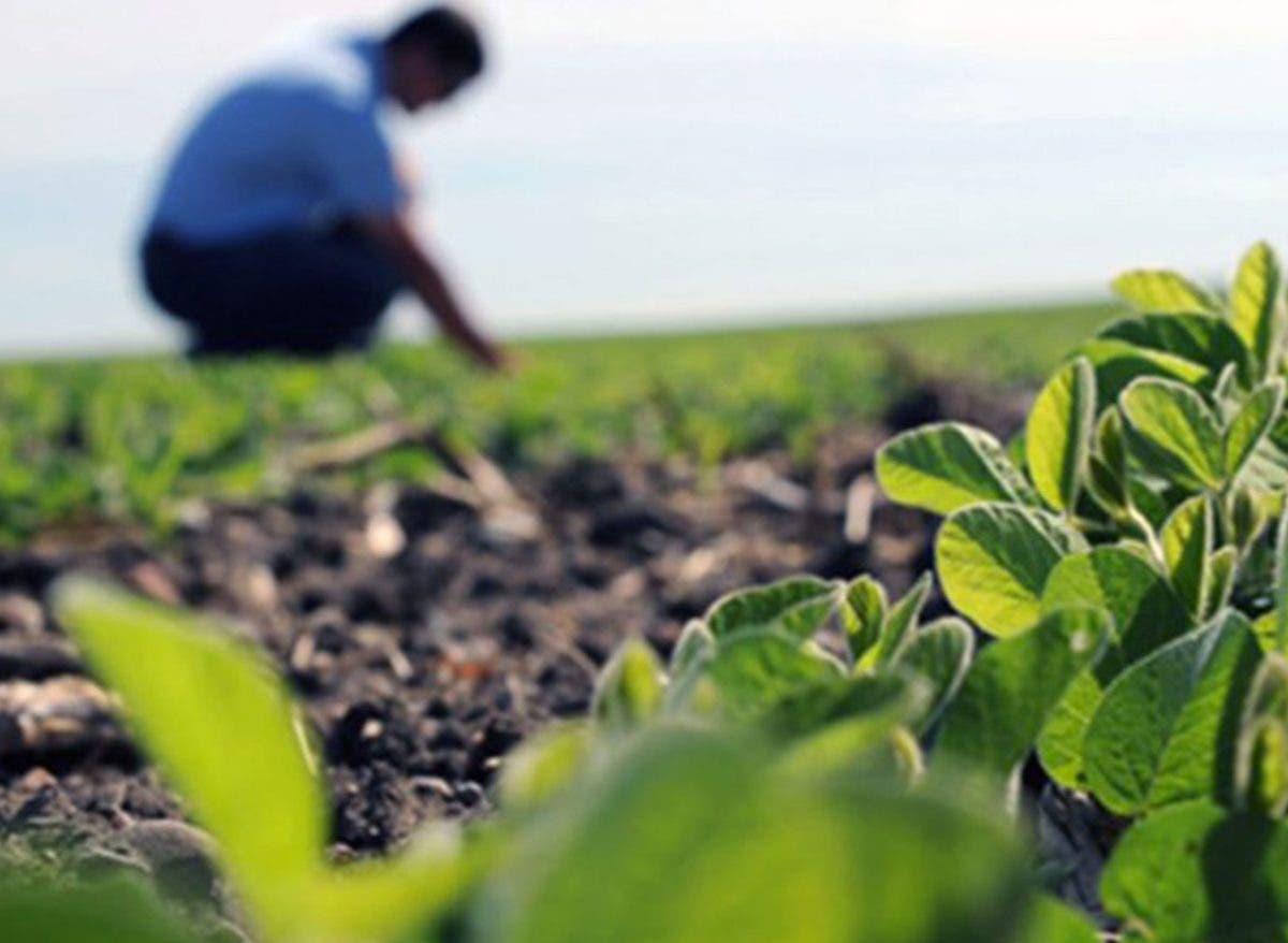 Pide mejorar salarios ingenieros agrónomos