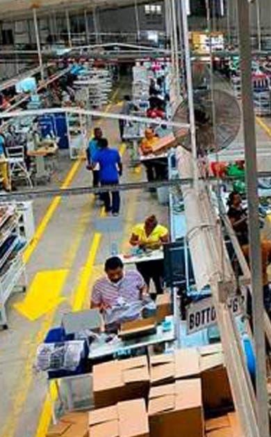 En un año se incorporan más de 235 mil trabajadores