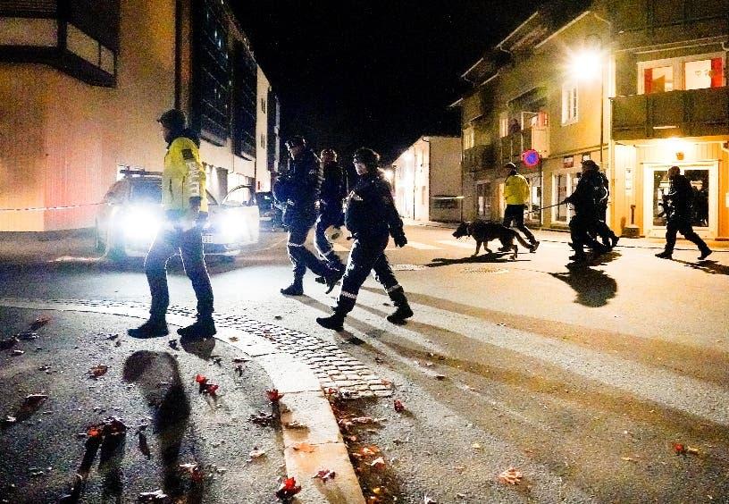 Usa arco, flechas para matar cinco personas en Noruega