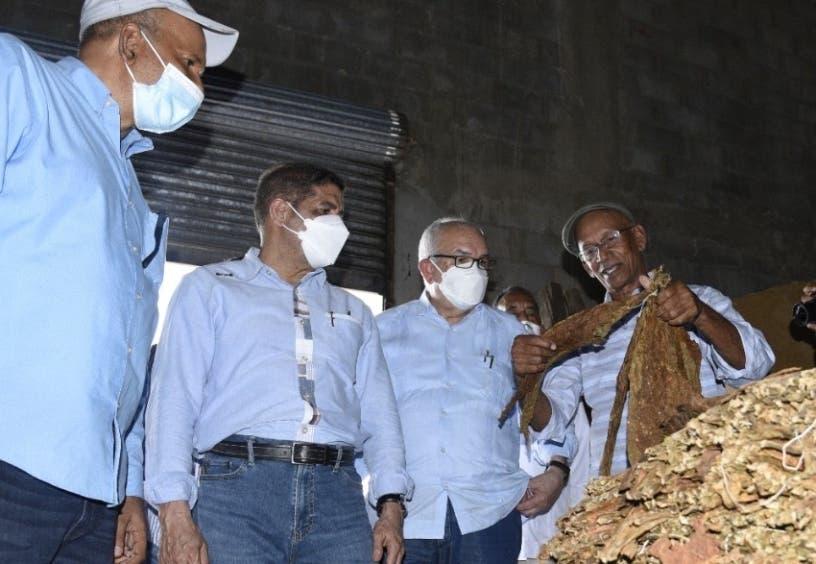 Inicia proyecto; Gobierno impulsará cultivo del tabaco en la región Suroeste