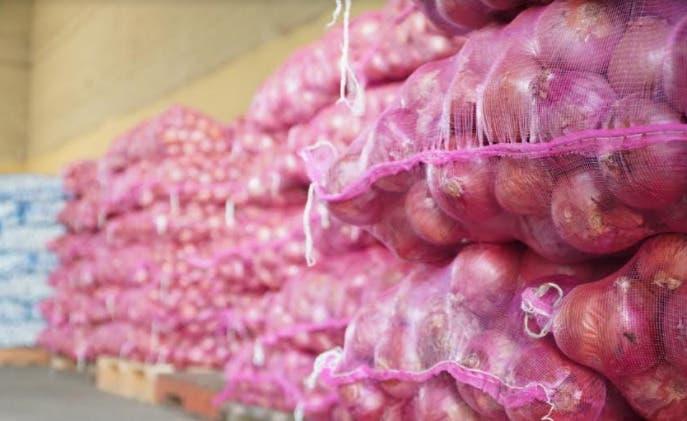 Advierten libra de cebolla podría volver a costar más de RD$100.00 por escasez