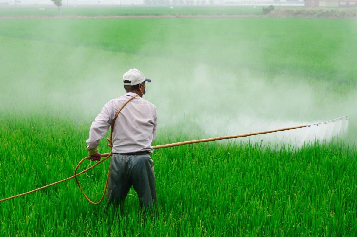 Más de 450 productores agropecuarios son beneficiados por el Inespre