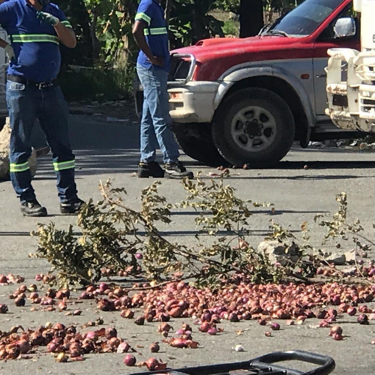 Productores de cebolla en Azua reclaman pago