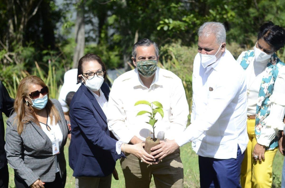 Plan Sierra inicia proyecto de reforestación en área de amortiguamiento de la presa Tavera-Bao